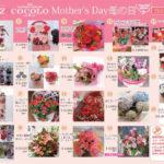 2018年、5月13日第2日曜日、「母の日」